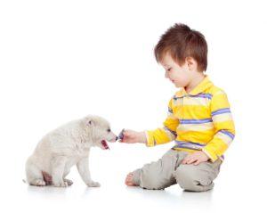 Małe dziecko bawiące się ze szczeniaczkiem